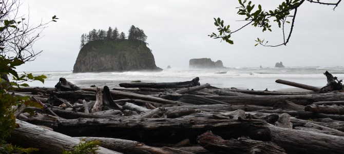 Pacific Beaches at Olympic National Park