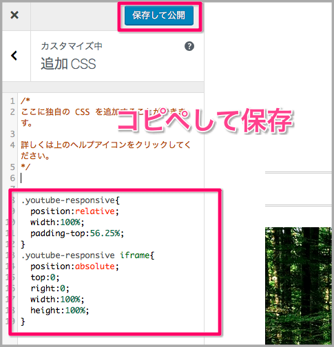 WordPress 追加CSS youtube