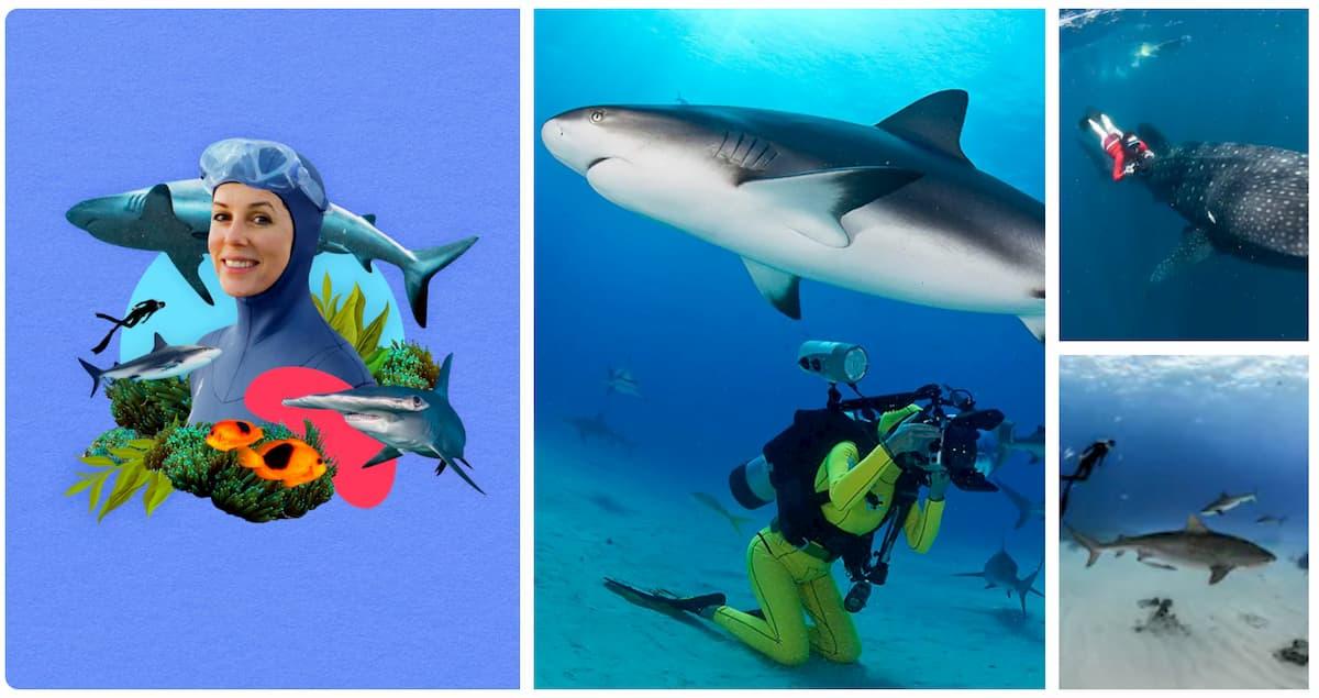 expériences Airbnb en famille Afrique du Sud Plonge requins