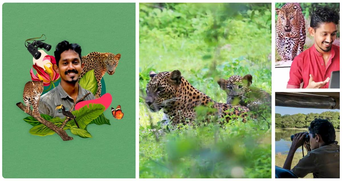 expériences Airbnb en famille Sri Lanka safari pour observer les léopards