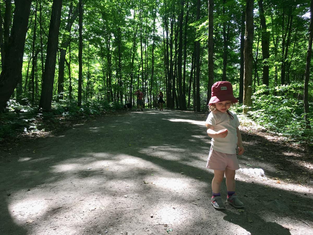Lucie forêt Parc de la Gatineau