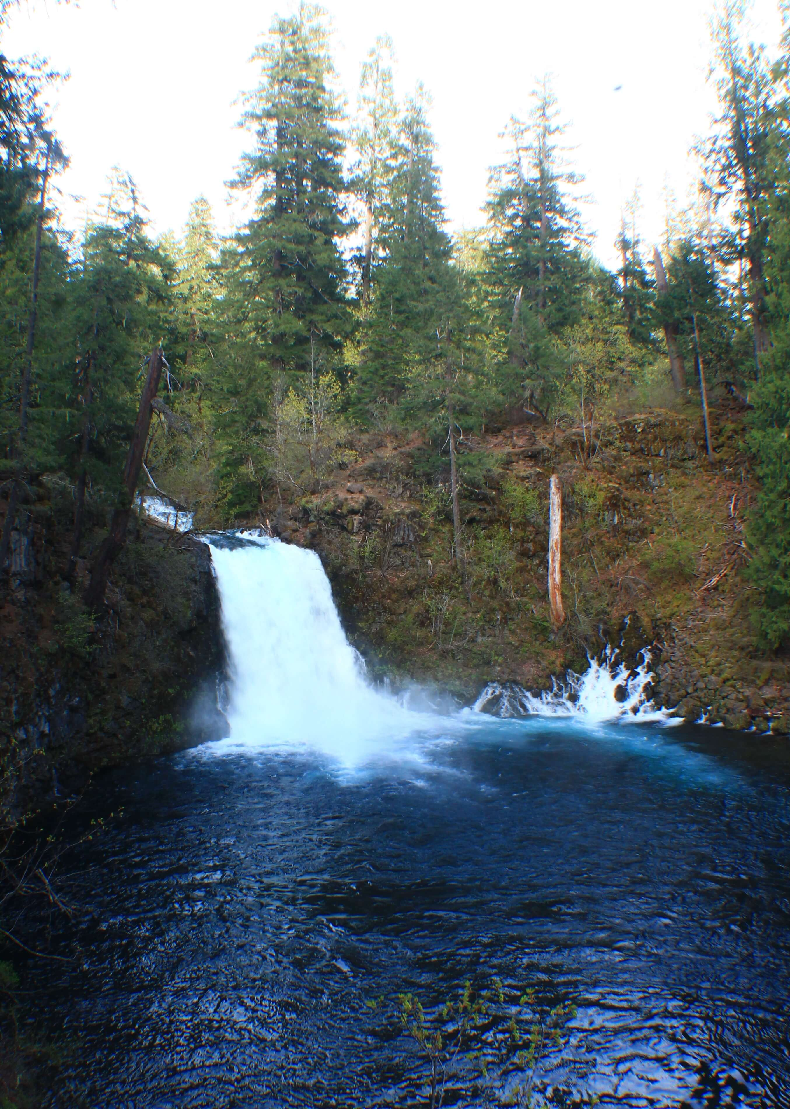 Tamoiltch Falls/Pools, 5 adventurous things to do on the Mackenzie river trail, oregon