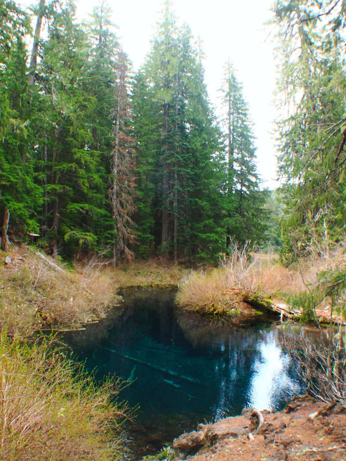 Clear Lake, 5 adventurous things to do on the Mackenzie river trail, oregon
