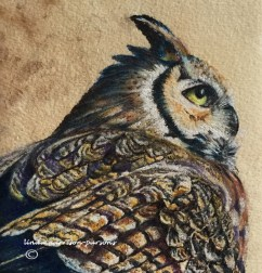 Distance Owl — pastel, coffee stained paper