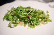 Sea Bass and Sorrel with a Pea-Fava Bean Cassoulet - The Modern