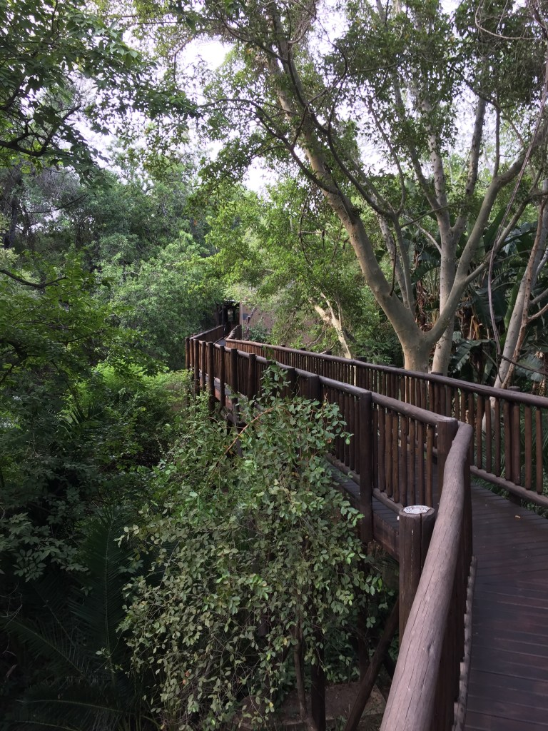 Walkway to the lobby at Protea by Marriott Kruger Gate Hotel