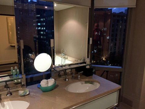 Vanity mirror with a view