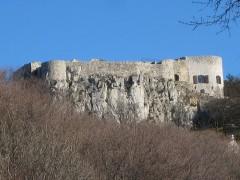 Castello di San Servolo.jpg