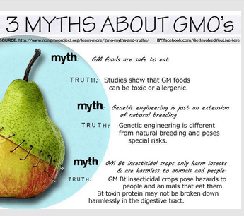 Three Myths about GMO's