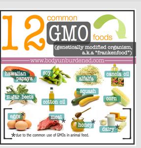12 GMO
