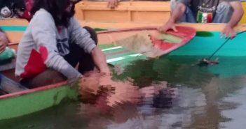 Terhantam Ombak di Sungai Mahakam, Seorang Ayah Meninggal Dunia, Si Anak Masih Dalam Pencarian