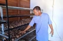 Kabupaten Paser