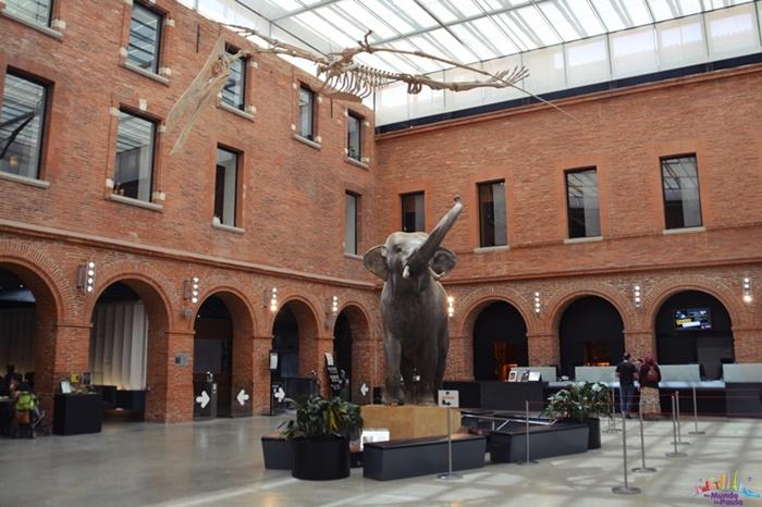 Museu de História Natural de Toulouse