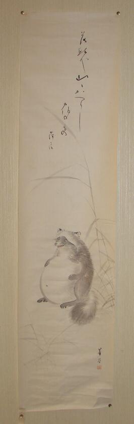 狸 のまくり(作品、本紙)