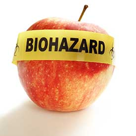 Image result for GMO images
