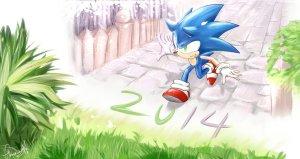 Sonic in 2014