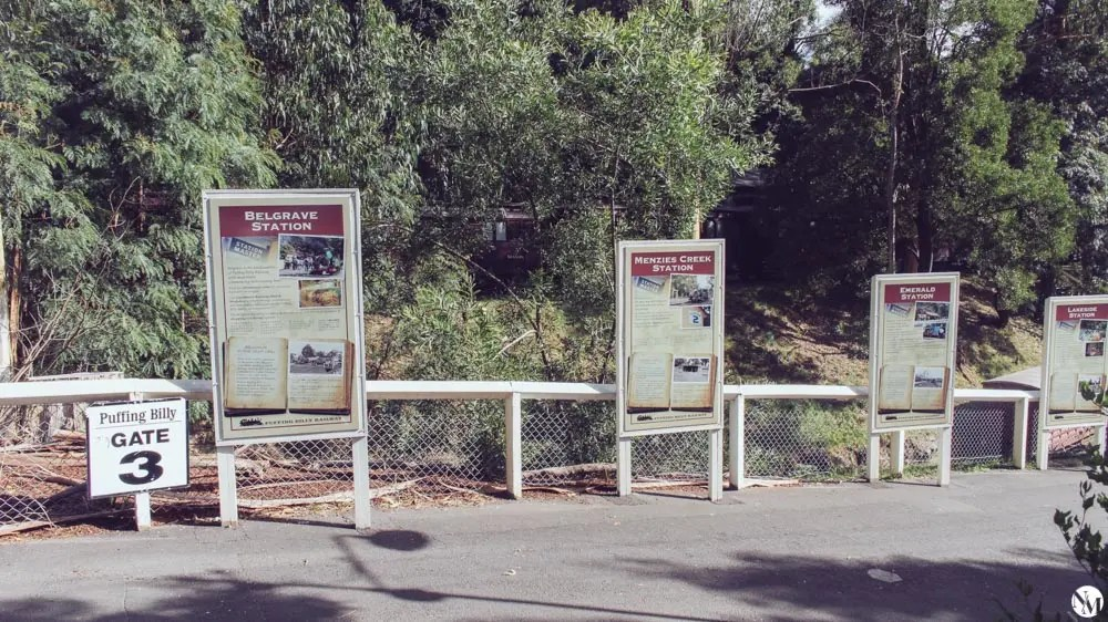 Melbourne Dandenong Ranges and Puffing Billy by Noni May