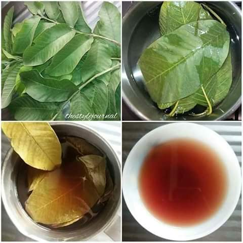 Check out 5 Natural Health Benefits Of Guava Leaves You Should Know