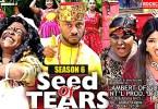 DOWNLOAD: Seed Of Tears Season 6 Latest Nigerian 2020 Nollywood Movie