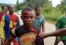 Man kills his Own cousin Brother over mango fruits in Abia State