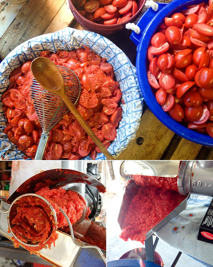 canning tomato sauce calabrese style