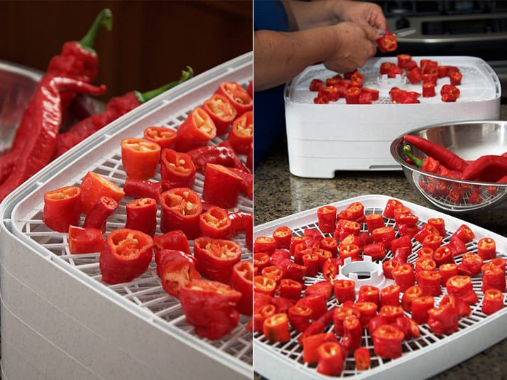 Drying Hot Peppers In Food Dehydrator