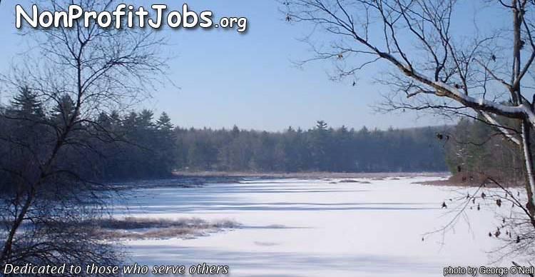 Non profit jobs
