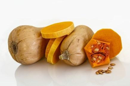 butternut-squash-399415_640