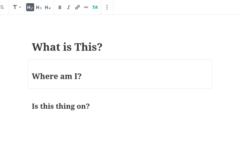 Questions written in the new WordPress Editor: What is this? Where am I? Is this thing on?