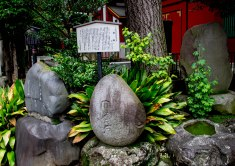 神田明神 by the Kanda shrine