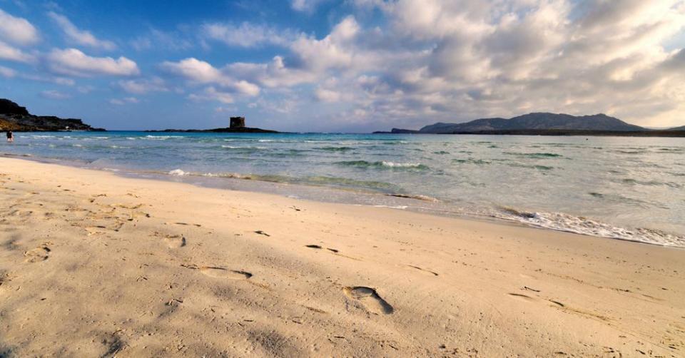 Ipoclorito di sodio, secondo il WWF è nocivo per la spiaggia