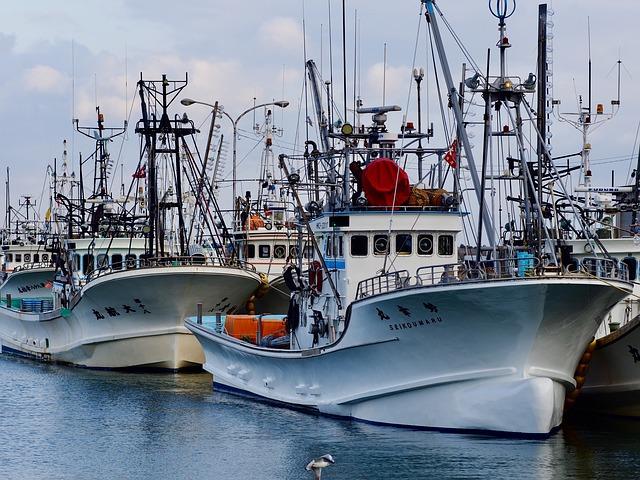 Calabria, 1,6 milioni di euro per le aziende ittiche calabresi