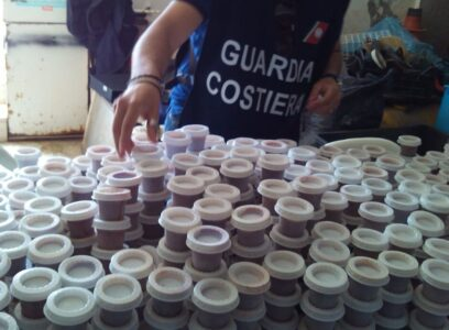 Alghero, polpa di riccio finisce in mercato nero: 25 persone indagate