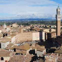Piazza del Campo vista dalla cima della facciata del duomo.