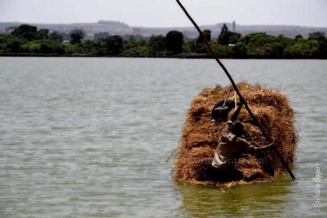Un carico e il suo traghettatore sul lago Tana