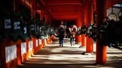 Tempio di Fushimi Inari - Kyoto, Giappone