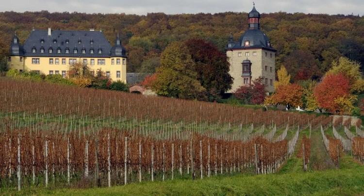 Castello Vollrads, Germania