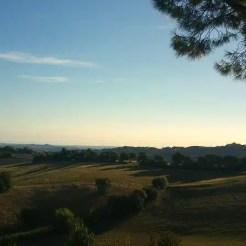 Arcevia, Marche (Italy)