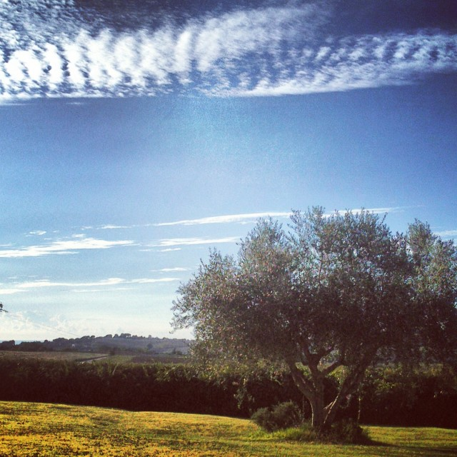 Sirolo - Marche, Italy