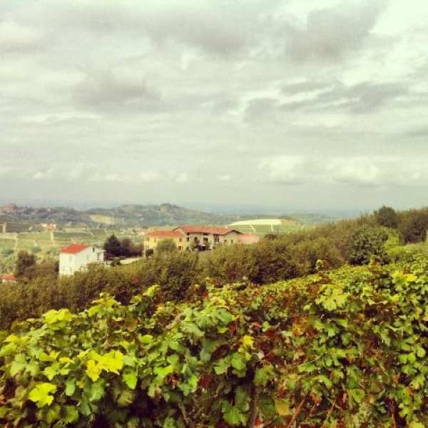 Panorama, Langhe - Piemonte, Italy