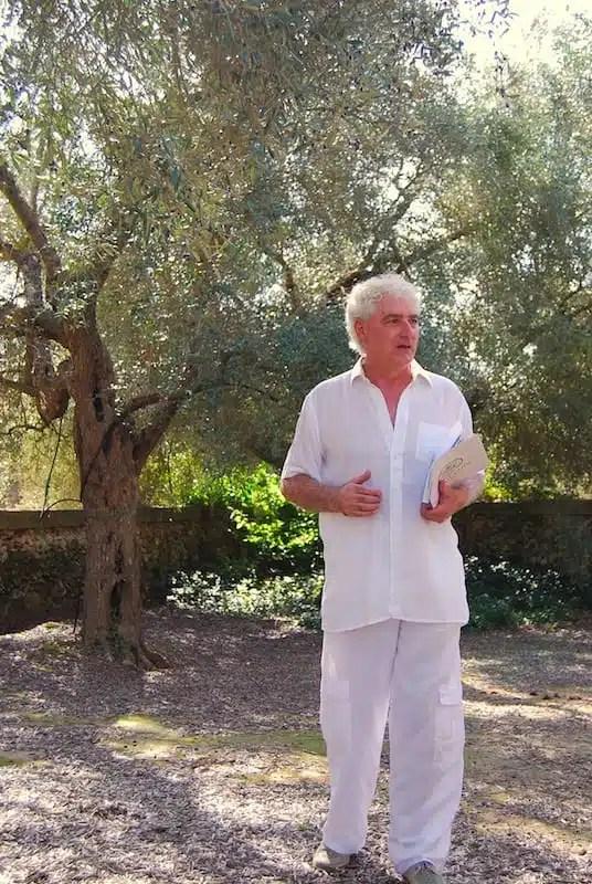 Giuseppe Imbriani, ulivo - Calimera (LE), Italy