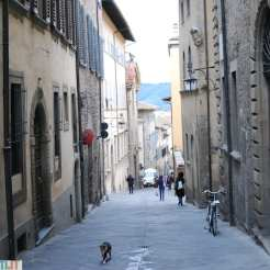 Arezzo, Toscana (Italy)