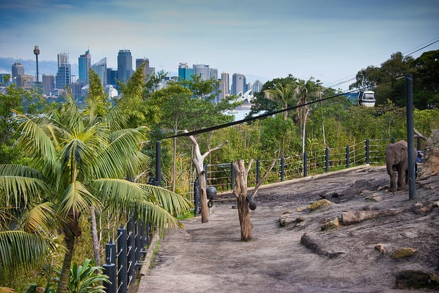 Taronga Zoo - Sydney, Australia