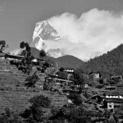 Fish Tail - Nepal