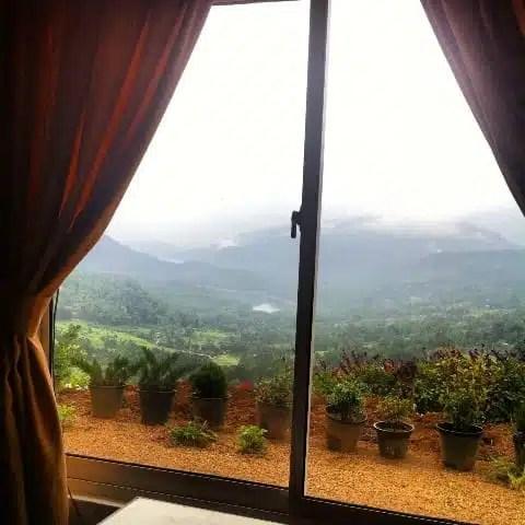 Piantagioni di tè - Sri Lanka