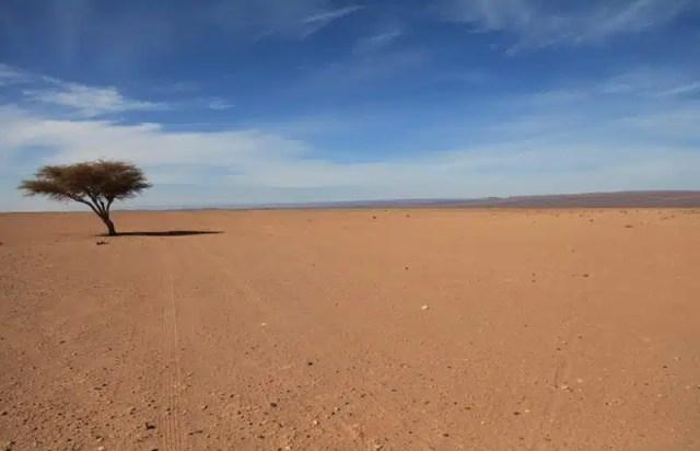 Sahara - Marocco