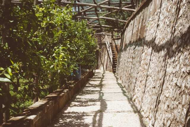 Limoneto Le Grottelle - Villa Massa, Italia
