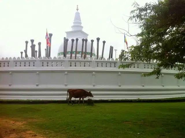 Thuparama Dagoba - Anuradhapura, Sri Lanka