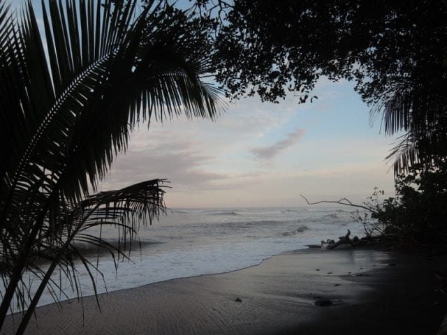 Corcovado National Park - Costa Rica