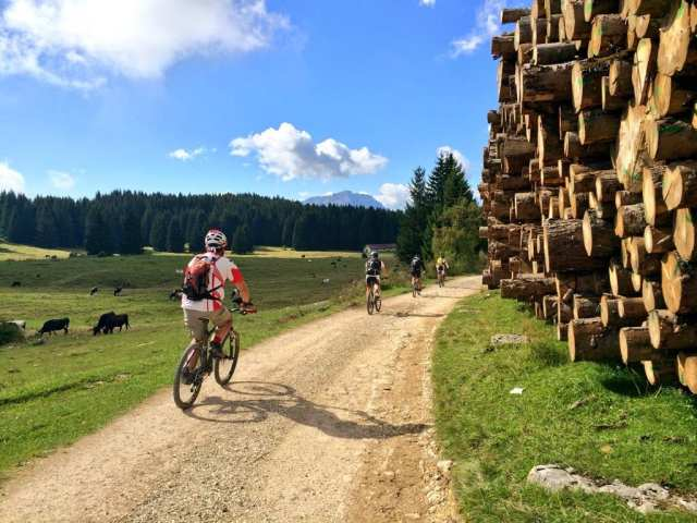 Mountain bike - Folgaria, Trentino, Italia